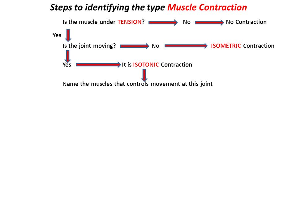 Steps to identifying the type Muscle Contraction