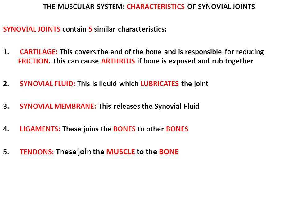 THE MUSCULAR SYSTEM: CHARACTERISTICS OF SYNOVIAL JOINTS
