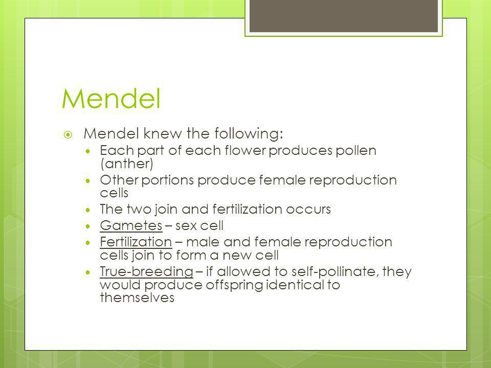 Mendel Mendel knew the following: