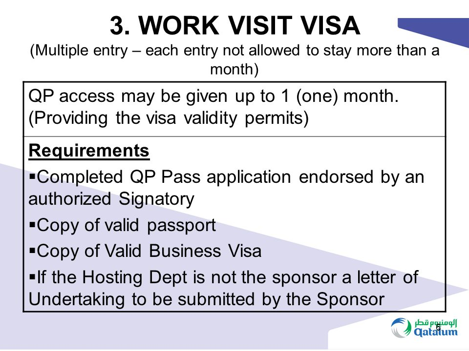 3. WORK VISIT VISA (Multiple entry – each entry not allowed to stay more than a month)