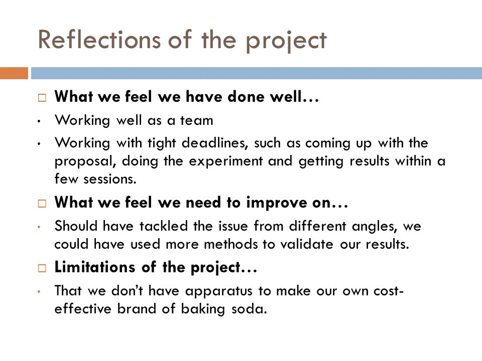 Reflections of the project