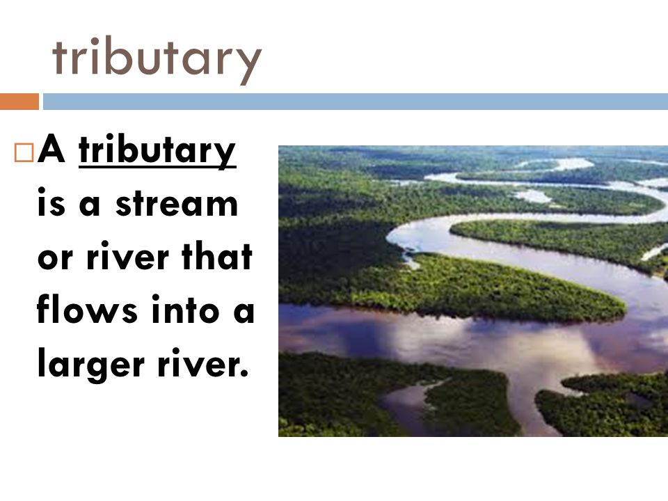 tributary A tributary is a stream or river that flows into a larger river.
