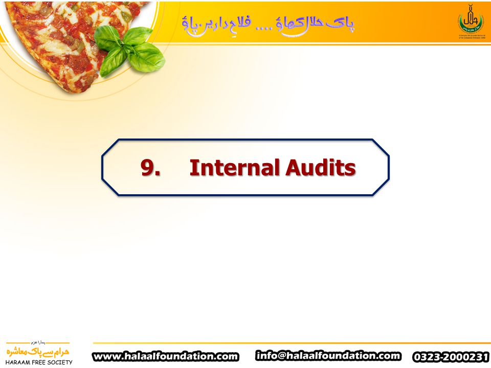 9. Internal Audits