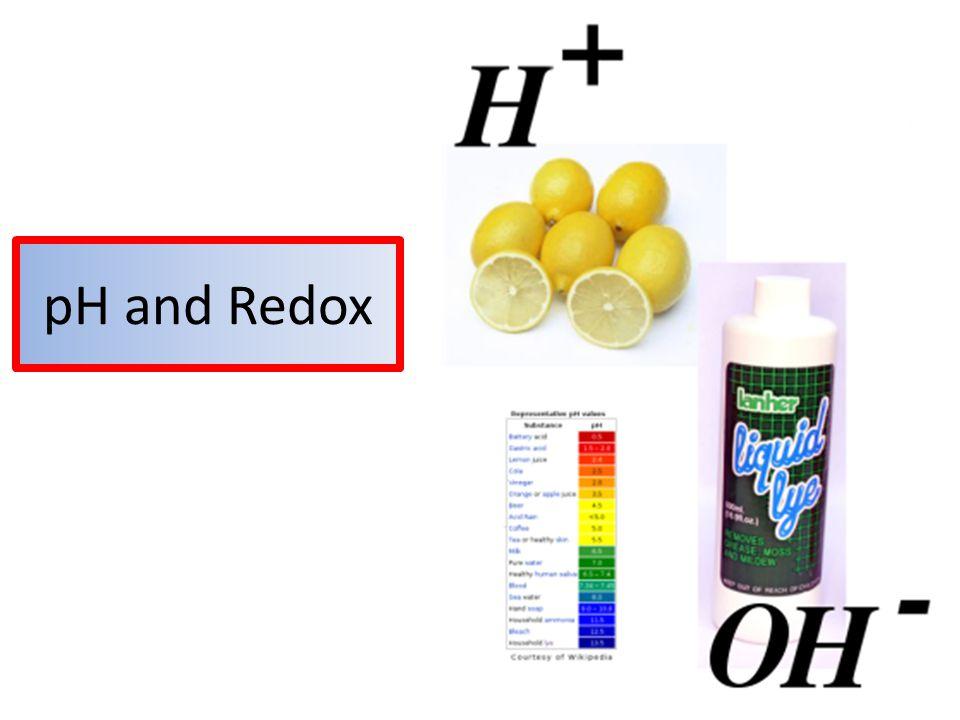 pH and Redox