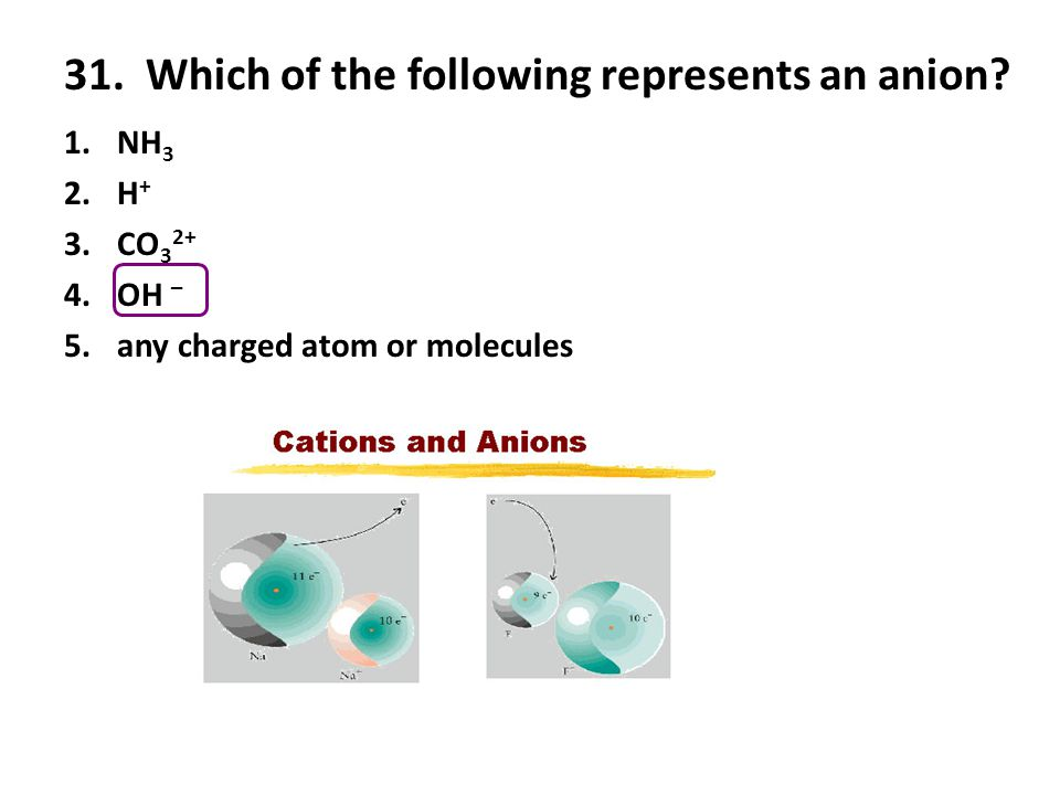 31. Which of the following represents an anion