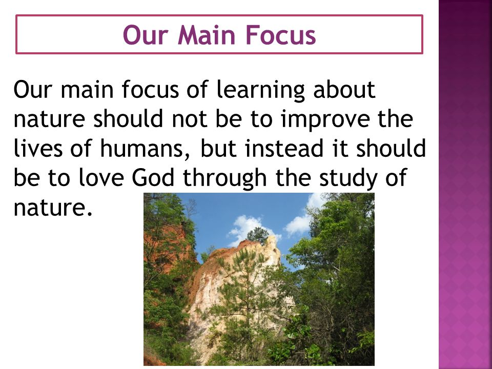 Our Main Focus