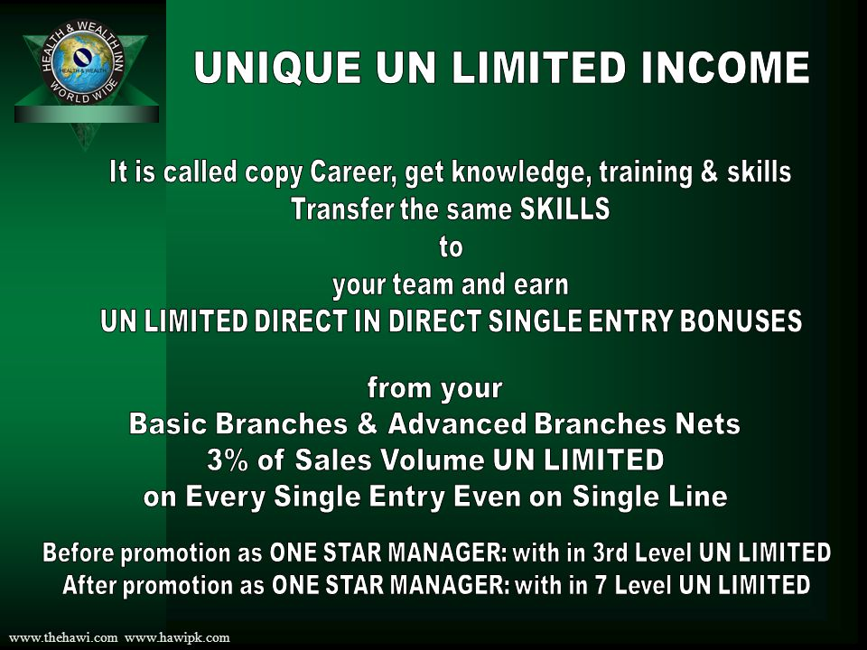 UNIQUE UN LIMITED INCOME
