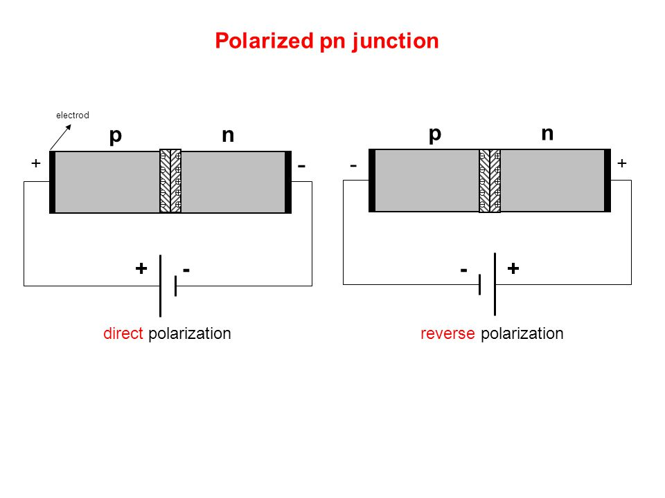 - Polarized pn junction p n p n - + - - + + + direct polarization