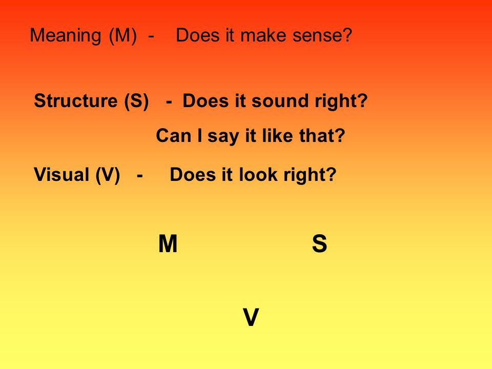 M S V Meaning (M) - Does it make sense