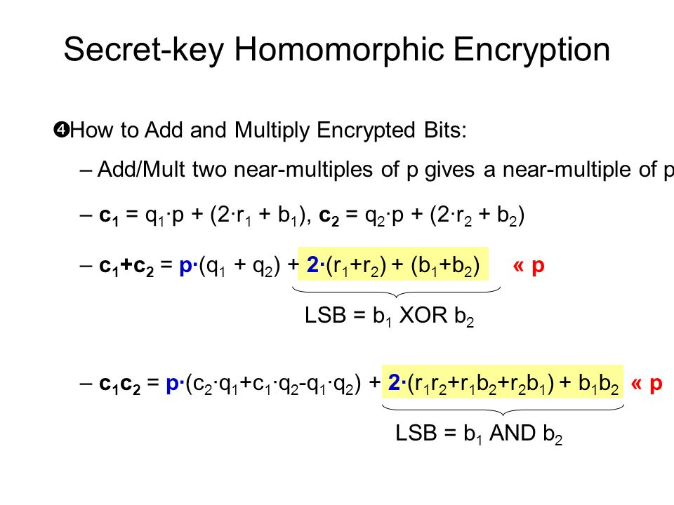Secret-key Homomorphic Encryption