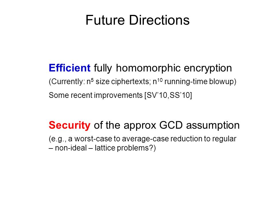 Future Directions Efficient fully homomorphic encryption