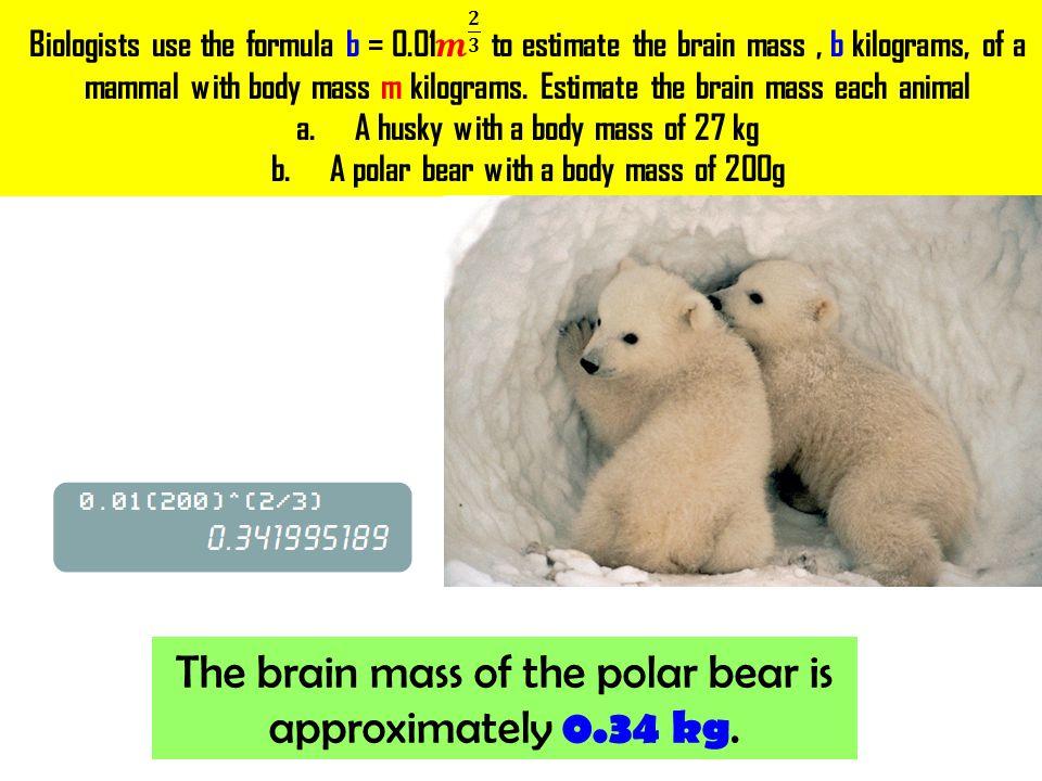b = 0.01 (𝟐𝟎𝟎) 𝟐 𝟑 USE a CALCULATOR! Substitute: m = 200