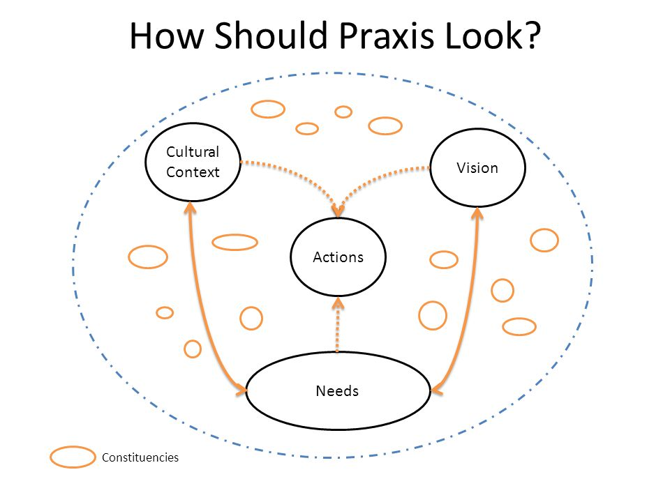 How Should Praxis Look Cultural Context Vision Actions Needs