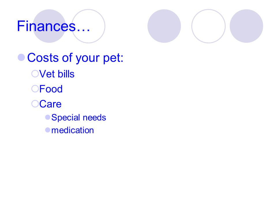 Finances… Costs of your pet: Vet bills Food Care Special needs