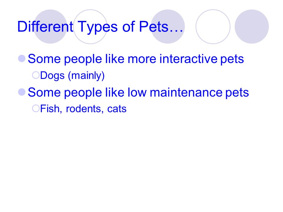 Different Types of Pets…