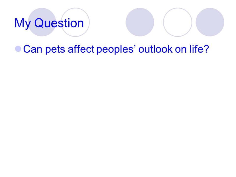 My Question Can pets affect peoples' outlook on life