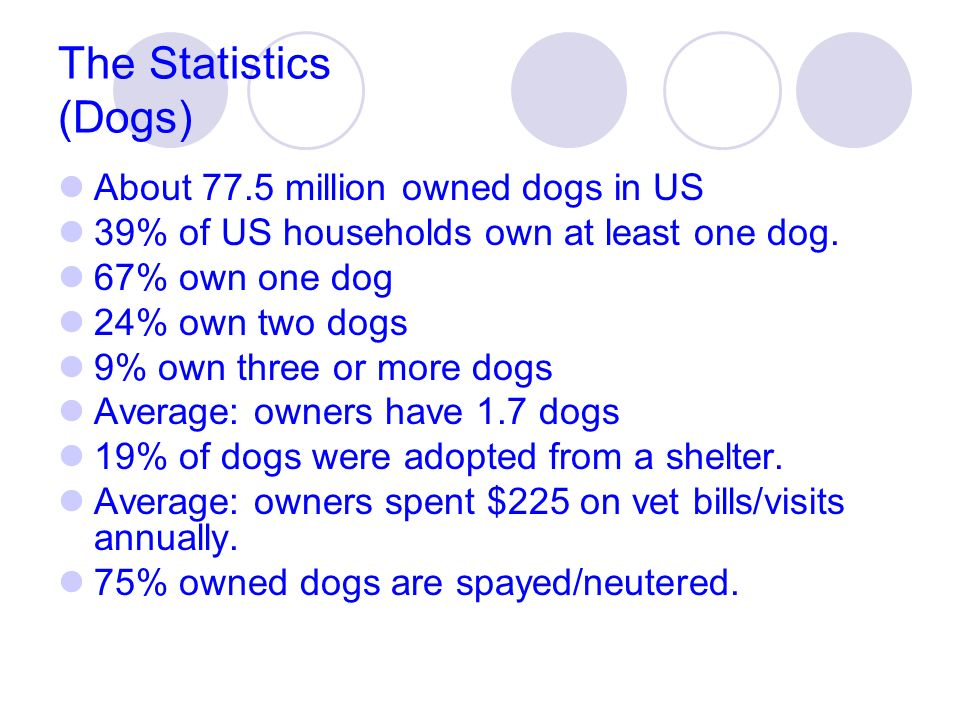 The Statistics (Dogs) About 77.5 million owned dogs in US