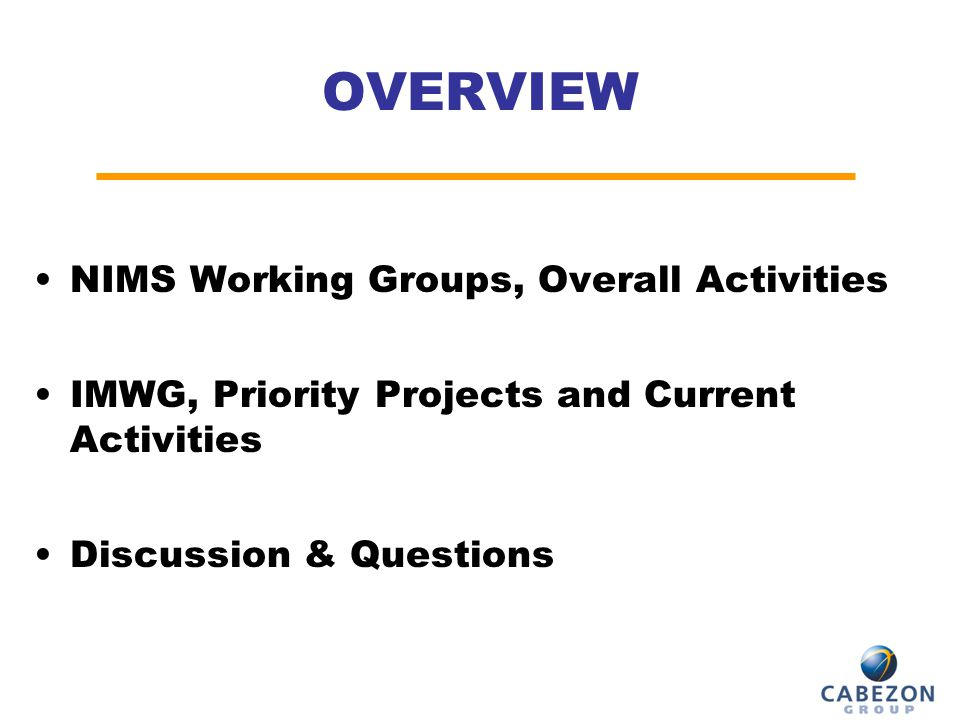 OVERVIEW NIMS Working Groups, Overall Activities