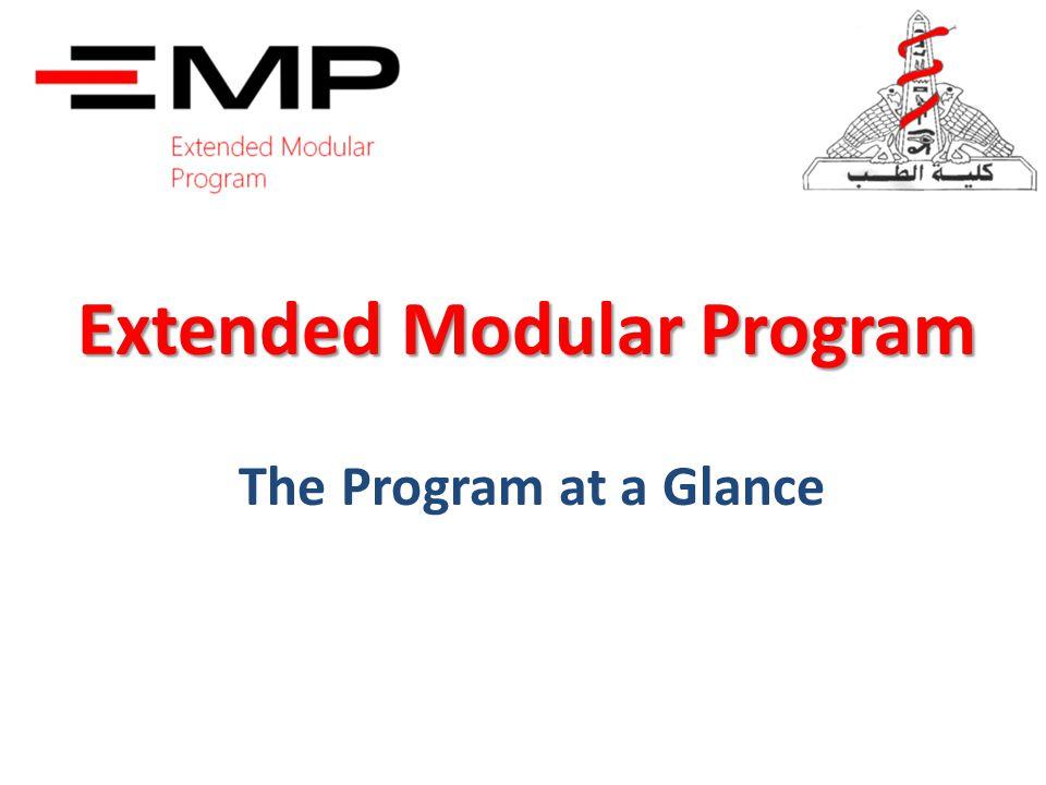 Extended Modular Program