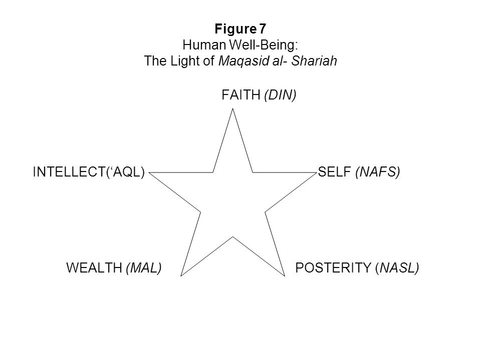 Figure 7 Human Well-Being: The Light of Maqasid al- Shariah