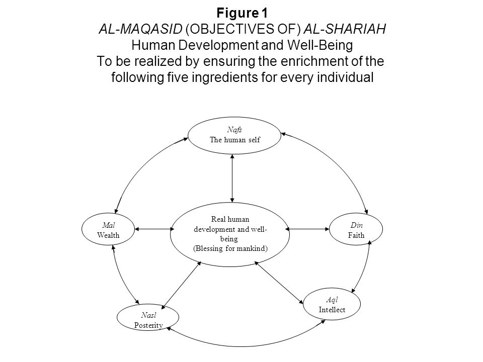 Figure 1 AL-MAQASID (OBJECTIVES OF) AL-SHARIAH Human Development and Well-Being To be realized by ensuring the enrichment of the following five ingredients for every individual