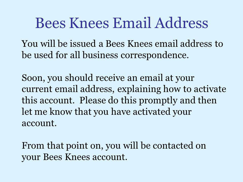 Bees Knees Email Address