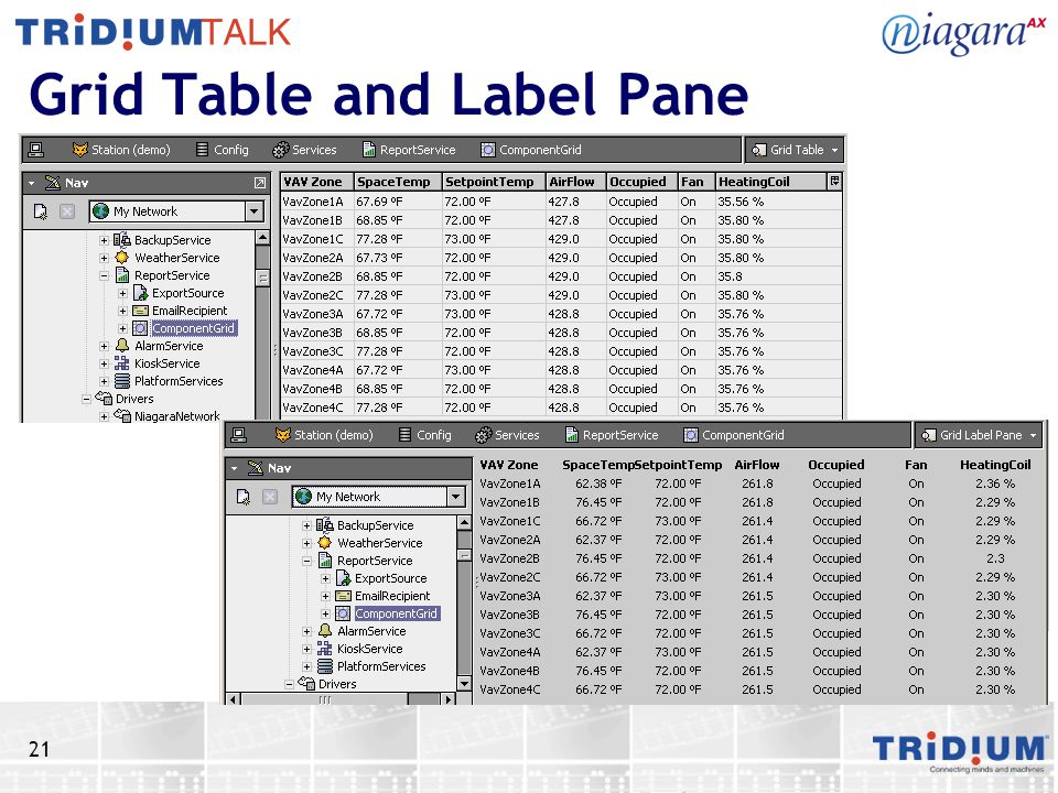 Grid Table and Label Pane