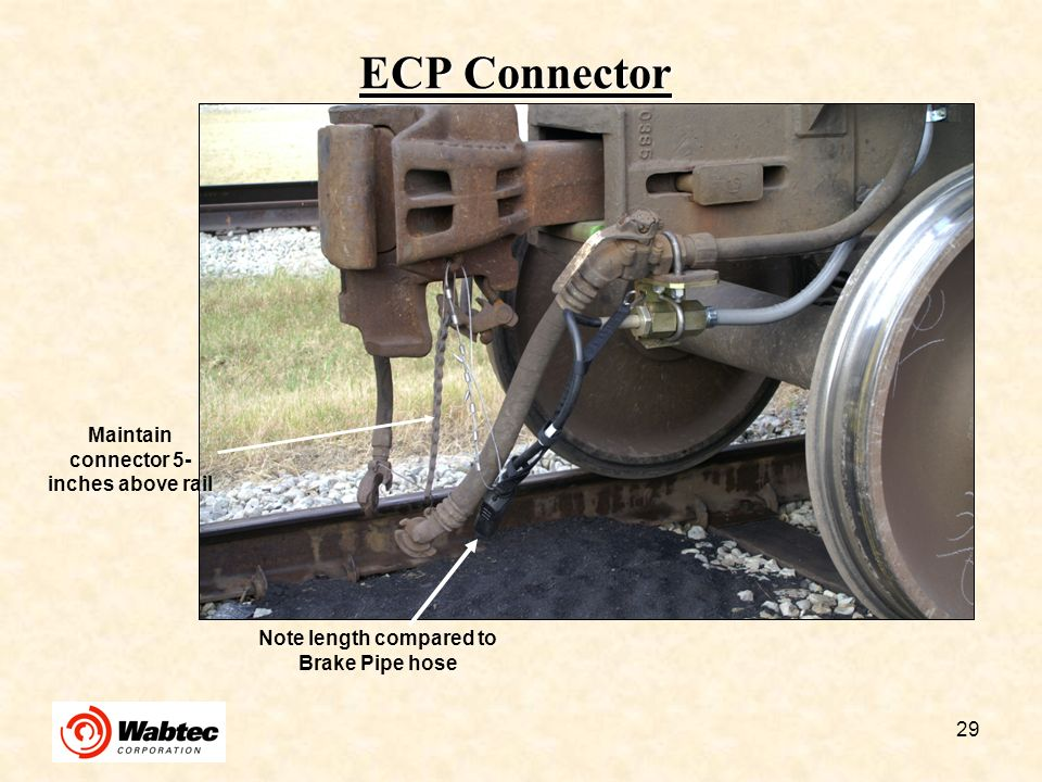 ECP Connector l Maintain connector 5-inches above rail