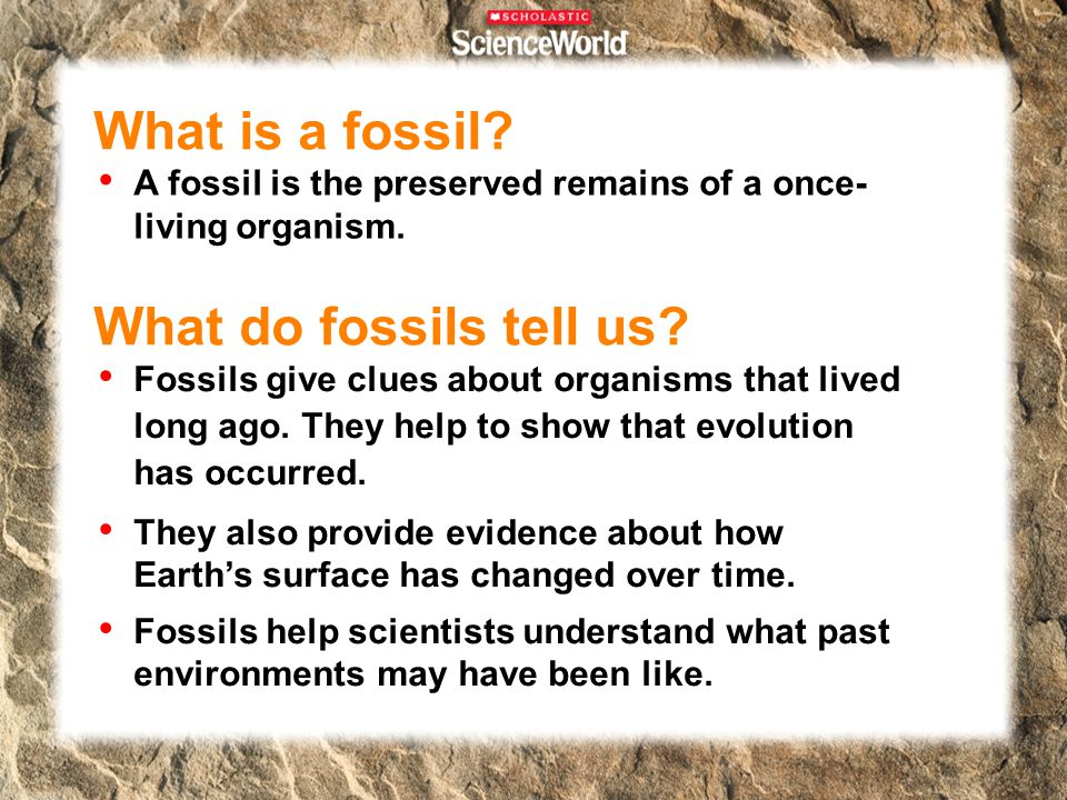 What is a fossil What do fossils tell us