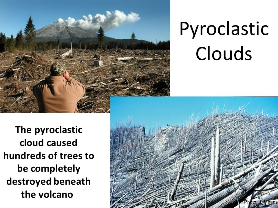 Pyroclastic Clouds The pyroclastic cloud caused hundreds of trees to be completely destroyed beneath the volcano.