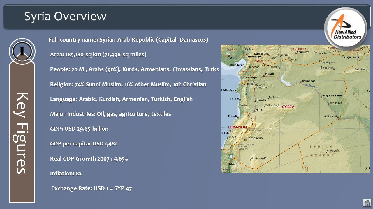 Key Figures Syria Overview