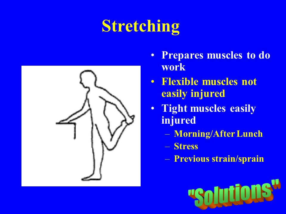 Stretching Solutions Prepares muscles to do work