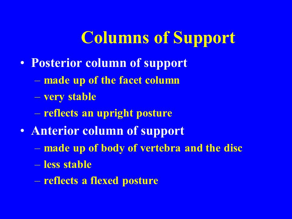 Columns of Support Posterior column of support