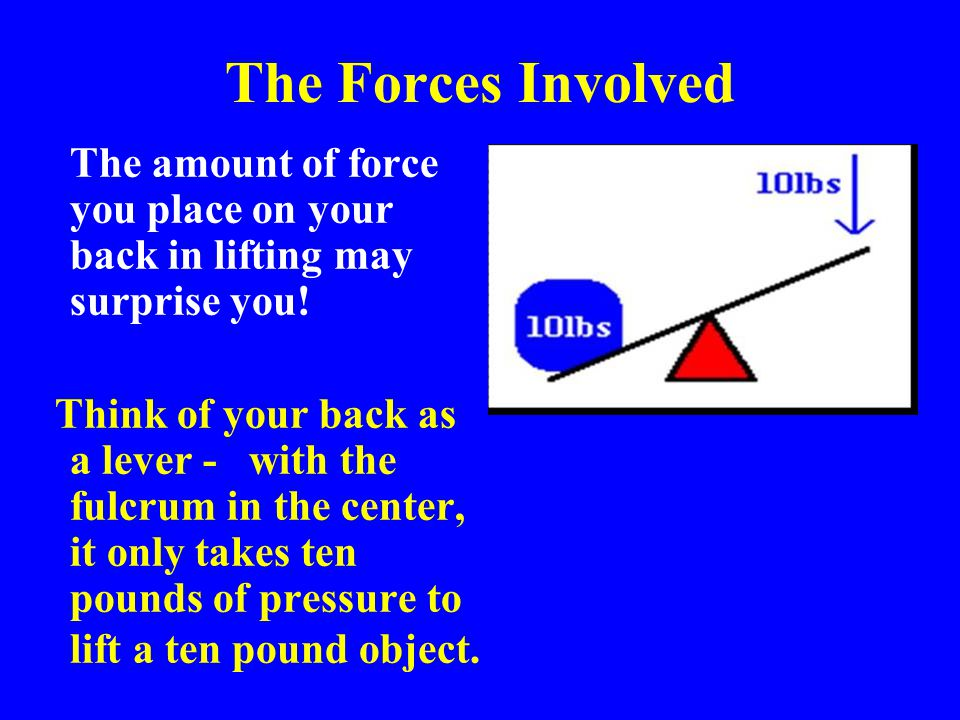 * The Forces Involved. 07/16/96. The amount of force you place on your back in lifting may surprise you!