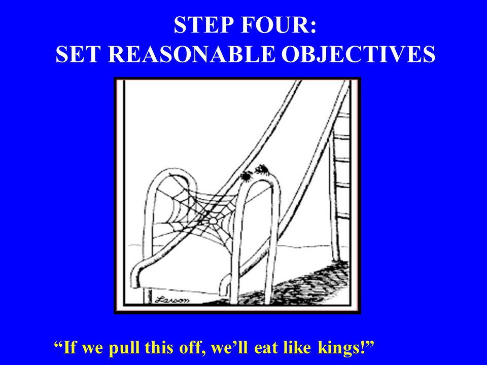 STEP FOUR: SET REASONABLE OBJECTIVES