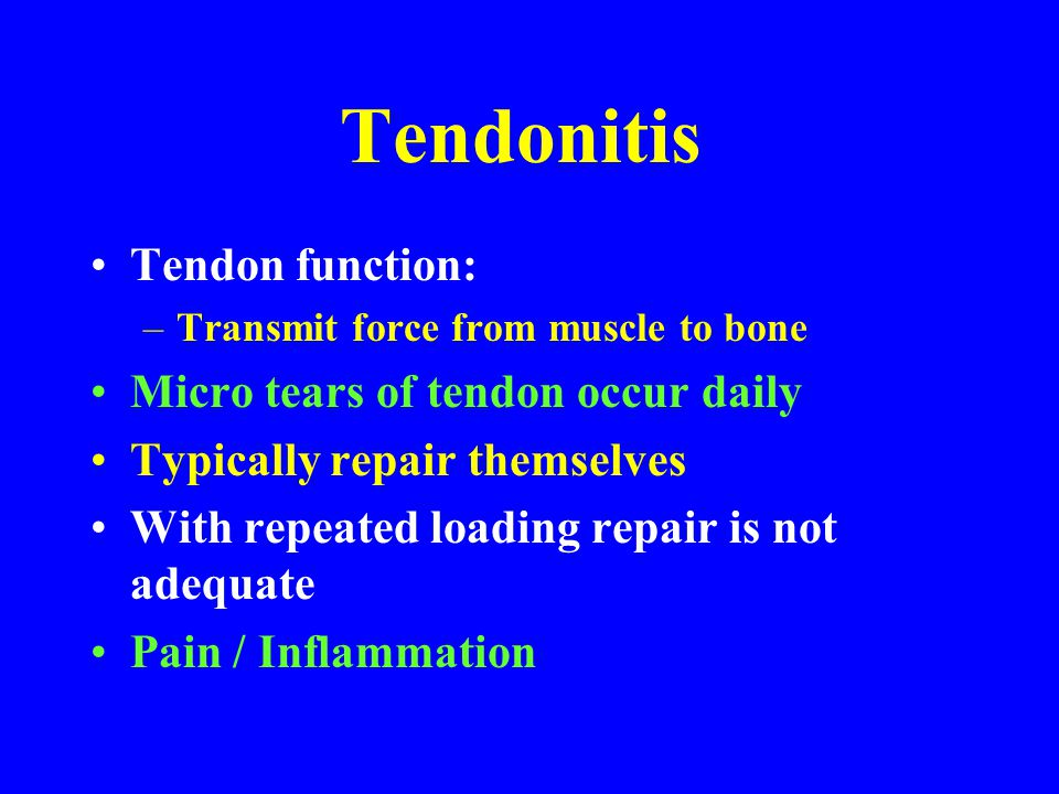 Tendonitis Tendon function: Micro tears of tendon occur daily