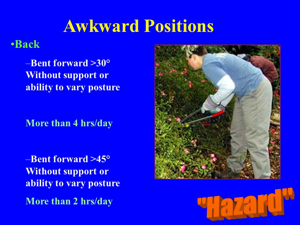 Awkward Positions Hazard Back