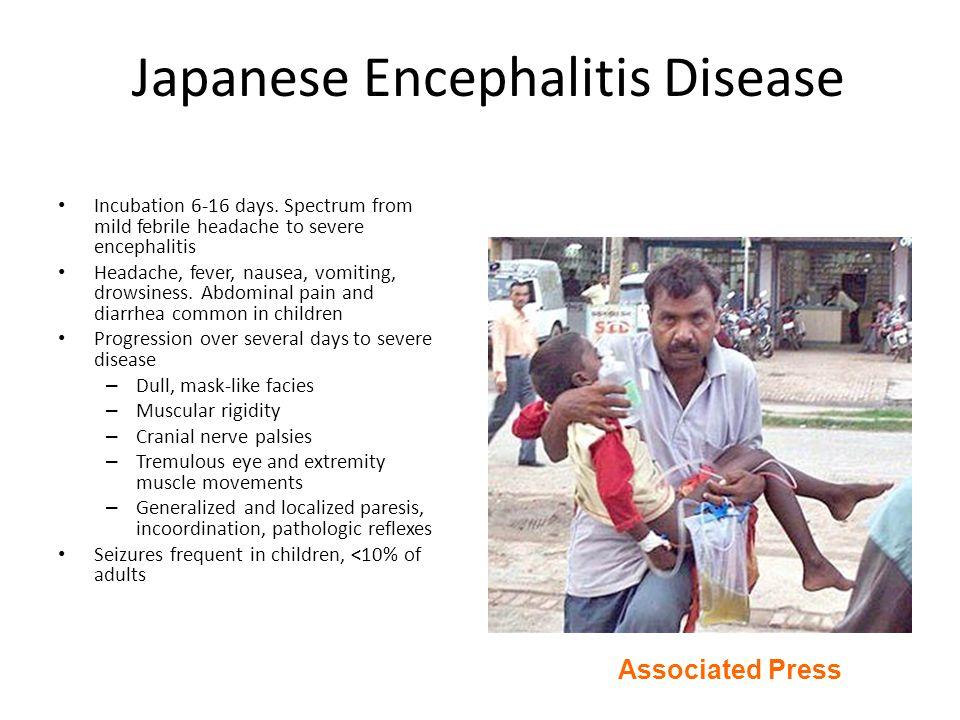 Japanese Encephalitis Disease