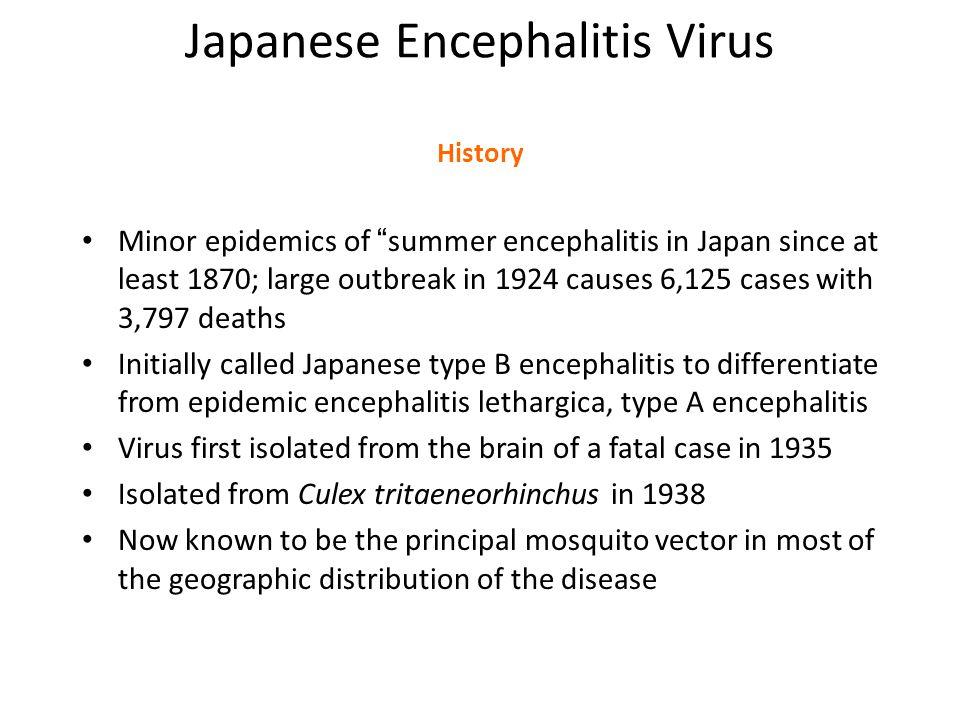Japanese Encephalitis Virus History