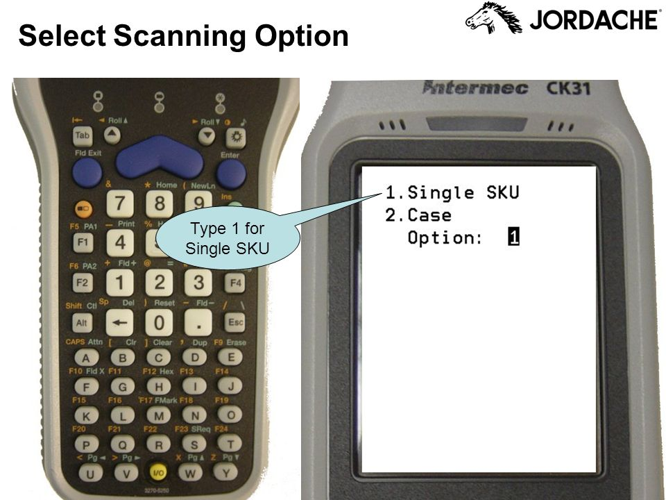 Select Scanning Option