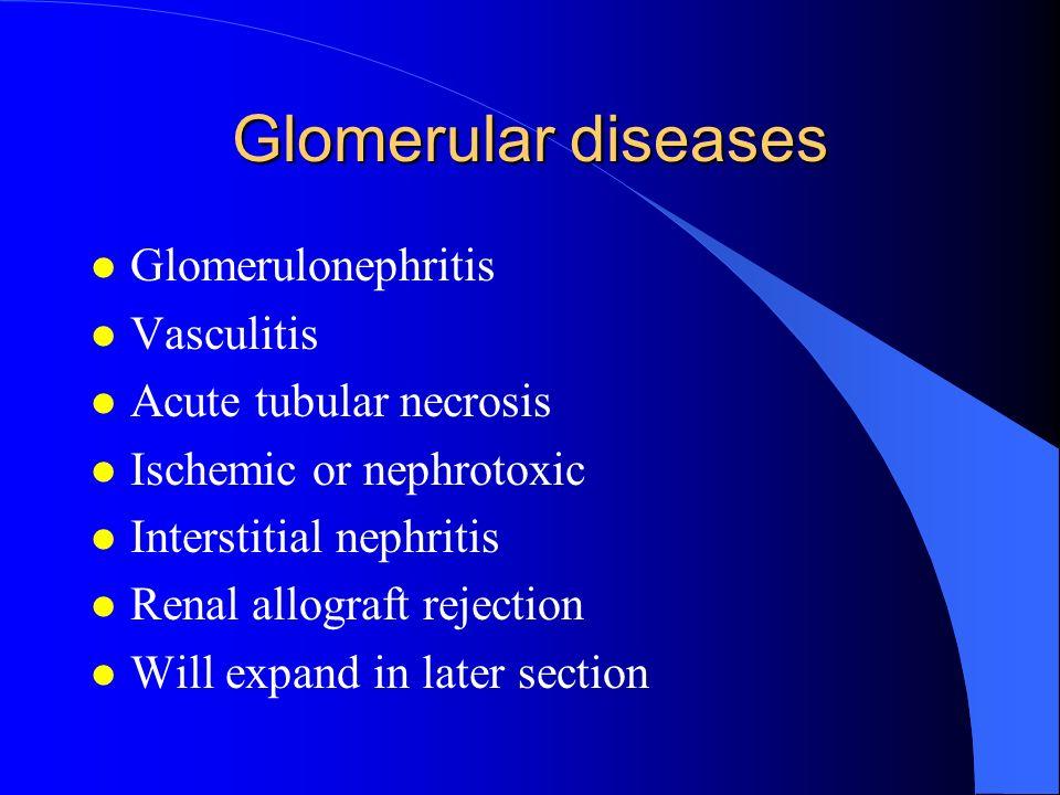 Glomerular diseases Glomerulonephritis Vasculitis