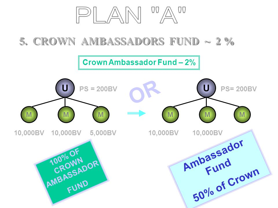 5. CROWN AMBASSADORS FUND ~ 2 %
