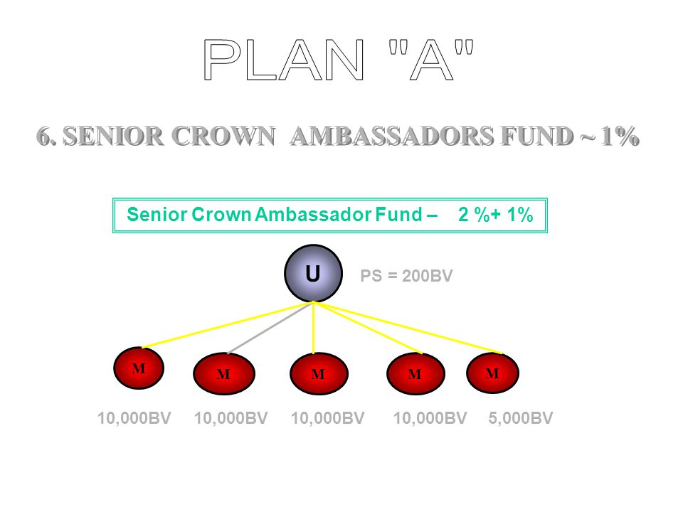 6. SENIOR CROWN AMBASSADORS FUND ~ 1%