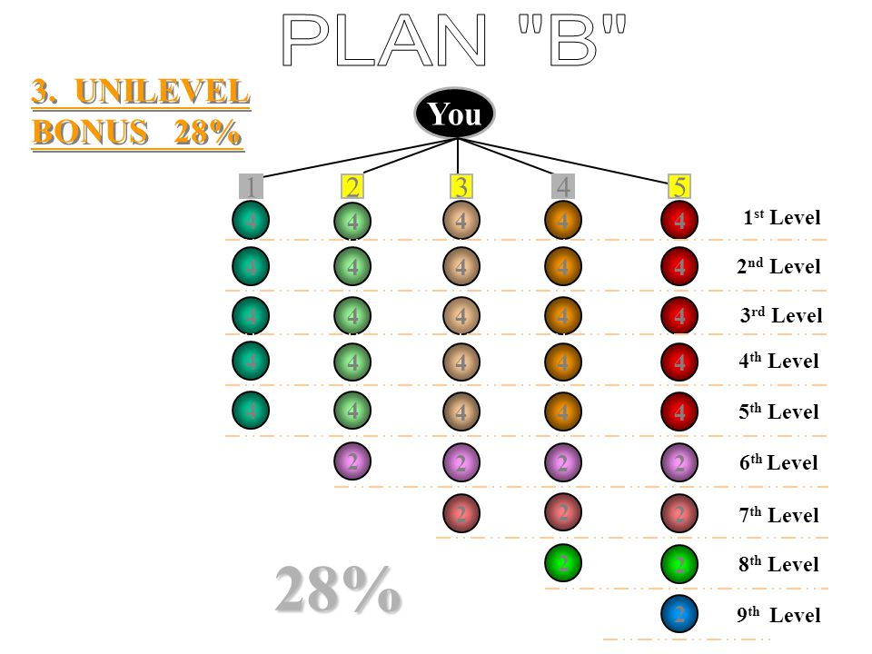 28% PLAN B 3. UNILEVEL BONUS 28% You 1 2 3 4 5 4 4 4 4 4 4 4 4 4 4 4