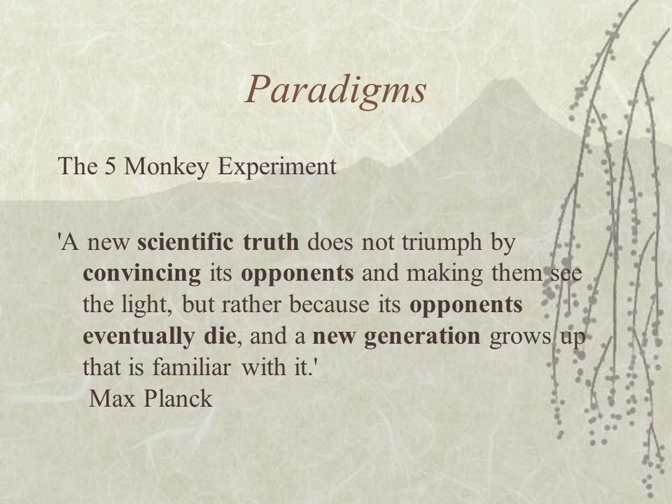 Paradigms The 5 Monkey Experiment