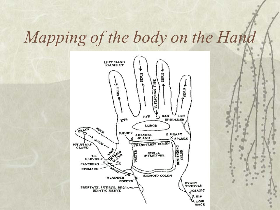 Mapping of the body on the Hand