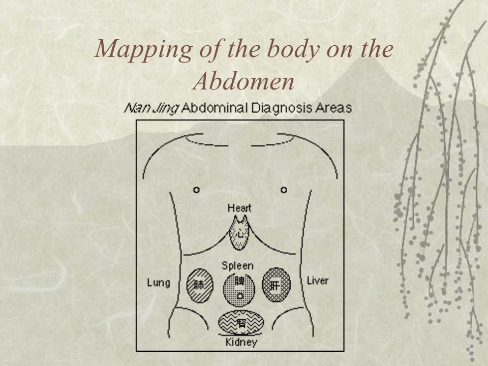 Mapping of the body on the Abdomen