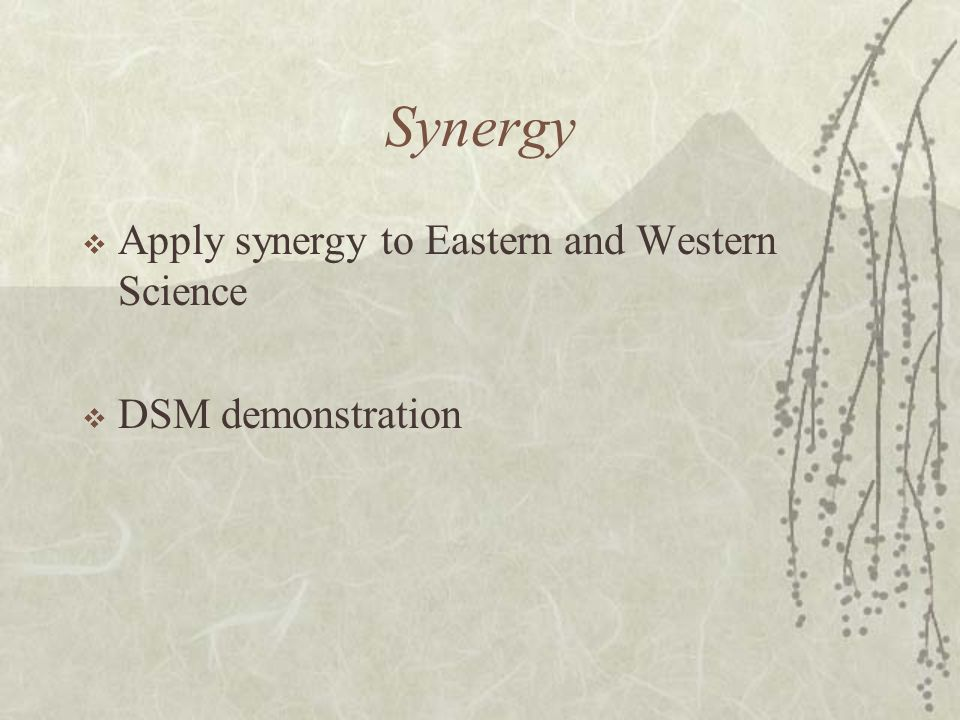 Synergy Apply synergy to Eastern and Western Science DSM demonstration