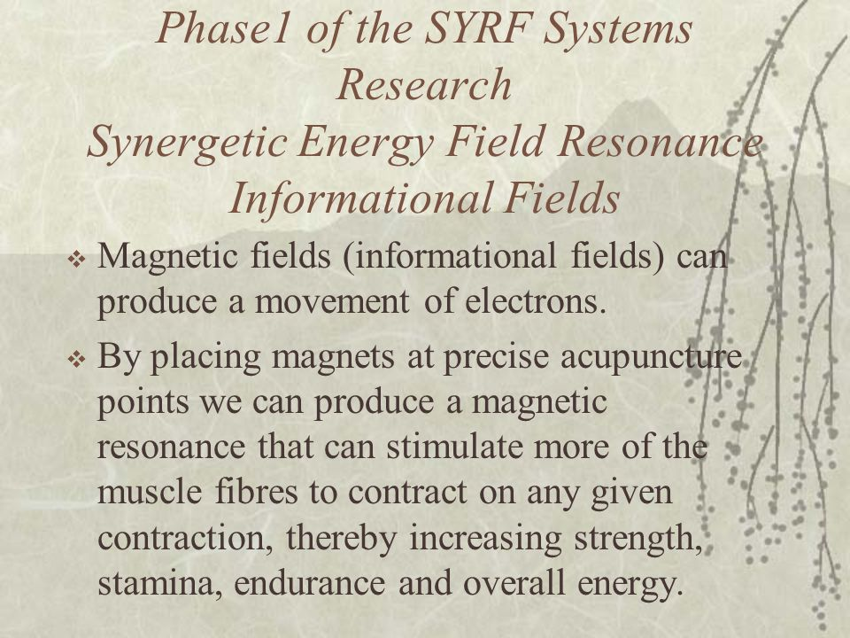 Phase1 of the SYRF Systems Research Synergetic Energy Field Resonance Informational Fields