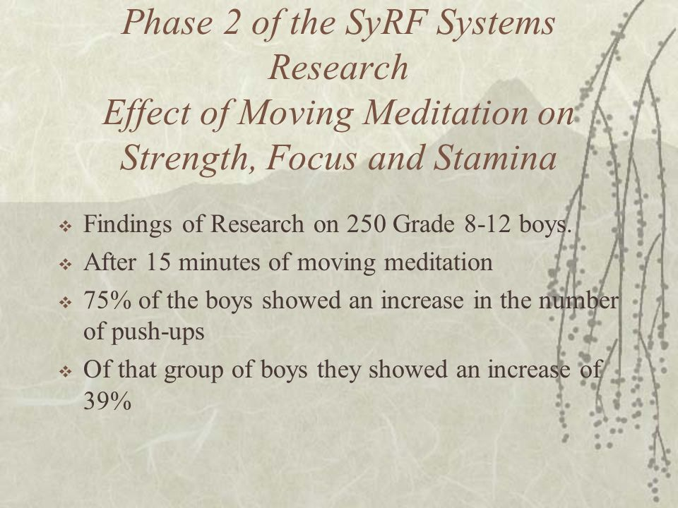 Phase 2 of the SyRF Systems Research Effect of Moving Meditation on Strength, Focus and Stamina